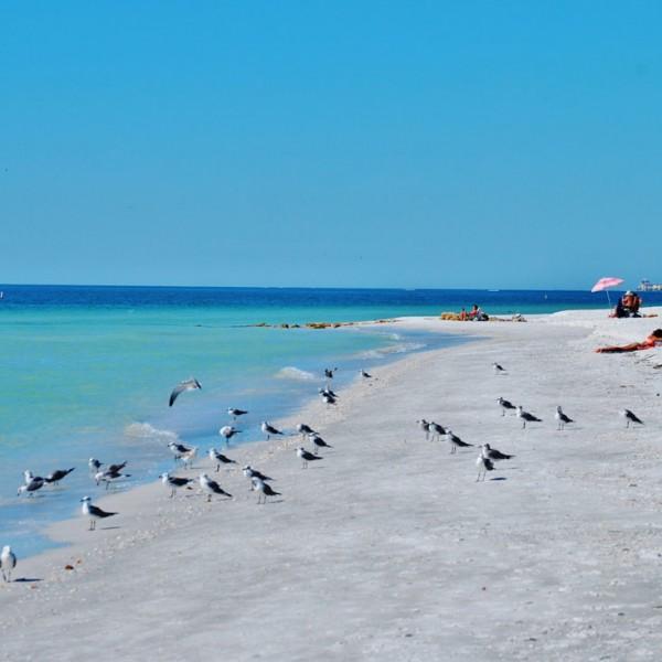 Treasure Island Beach: Beach Weddings In Treasure Island And St Pete Beach, Florida