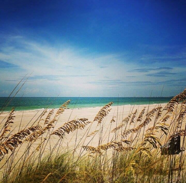 Treasure Island Beach: Things To Do And Area Attractions