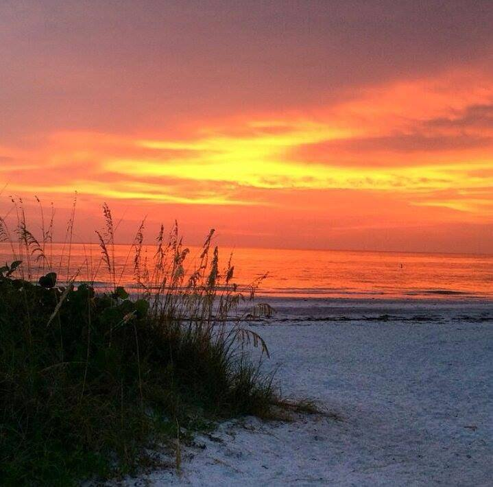 Island Beach Sunset: Things To Do And Area Attractions